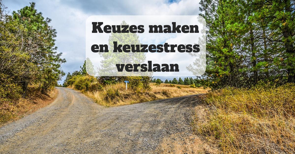 Course poster – Keuzes maken en keuzestress verslaan v3